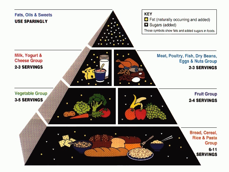 usda_food_pyramid-for-1992-2005-2