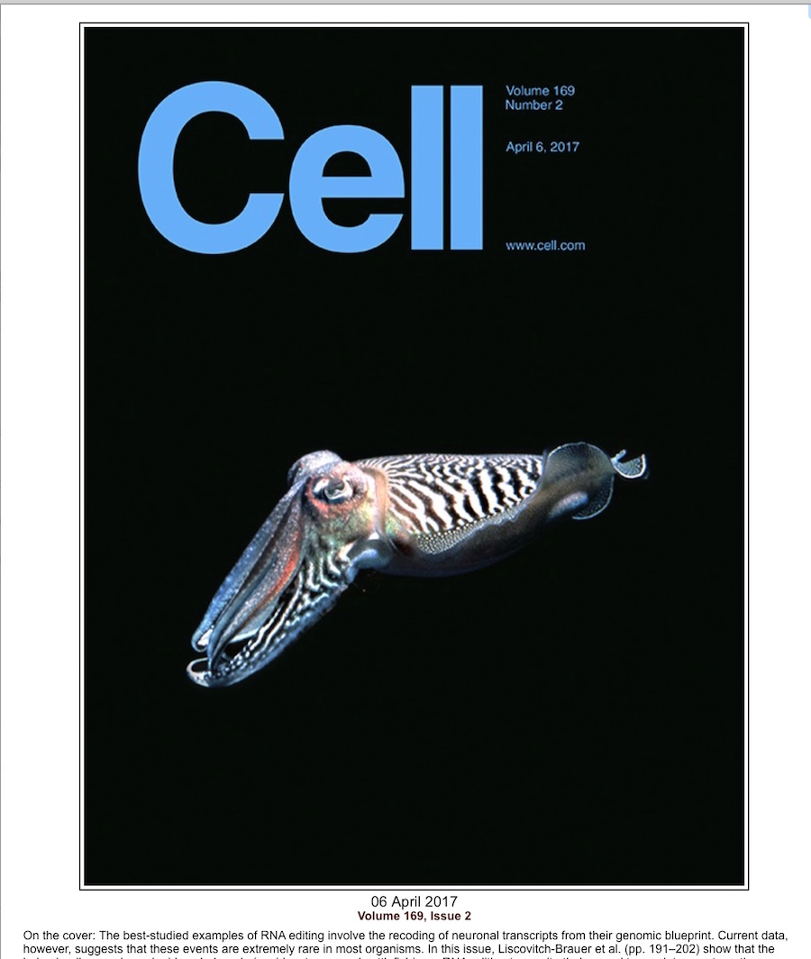 Cell cover cfsh